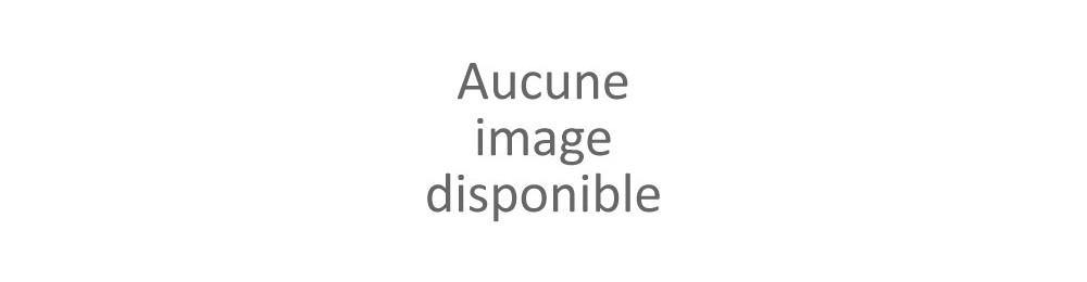 Rouleur/Sprinter
